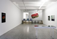 Constanze Ruhm, My_Never_Ending_Burial_Plot, Installation Shot, Kerstin Engholm gallery, 2010